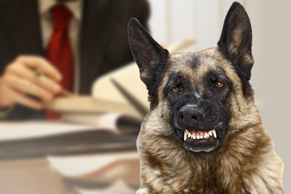 dog bite compensation, loss of income after a dog bite, recovering damages dog bite, dog bite compensation awards, dog bite settlement award