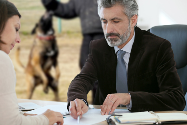 dog bite lawyer, dog bite attorney, filing dog bite cliam, file dog bite claim, lawyer for dog bite, attorney for dog bite