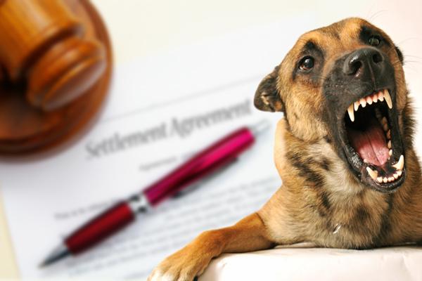 dog bite settlement amounts, dog bite compensation, award settlement for dog bite, dog attack settlement amount, dog bite lawsuit awards, dog bite settlements, typical dog bite settlements, dog bite lawsuit amount